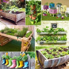 142 meilleures images du tableau potager hors sol horticulture vegetable garden et gardening. Black Bedroom Furniture Sets. Home Design Ideas