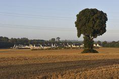 #elven #bretagne #morbihan #paysage #champ #petitevillealacampagne