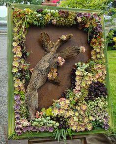 Un quadro vegetale, con Sedum, Crassule e Aeonium  http://lefotodiluisella.blogspot.it/?zx=2ab86e85382d733a