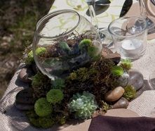 Moss and succulents: Succulents go with everything!  Combine them with twigs, moss, raffia, jute or whatever you like.  If the look you're after is country and rustic, go for
