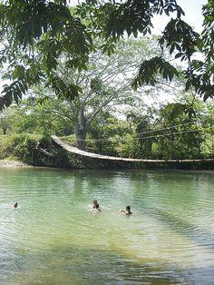 San Ignacio, Belize.  Jungle hammock bridge.