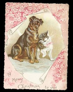 P37 - VICTORIAN XMAS CARD - CAT & DOG - ERNEST NISTER - prob. HELENA MAGUIRE. Dog may not be by Helena Maguire.