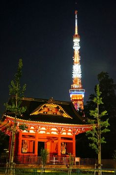 Tokyo Tower & Temple, Japan