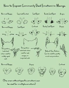 How to Draw anatomicaly correct Manga Cats (it can be done!)