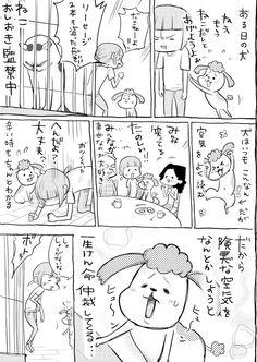 松本ひで吉*犬と猫とねこ色単行本6/13発売 (@hidekiccan) さんの漫画 | 79作目 | ツイコミ(仮)