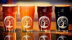 Equinox Brewing in #FortCollins is one of my FAVORITE breweries in #Colorado!