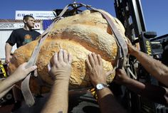 Massiv pumpkin weighing 1,969 pounds took the title for plumpest pumpkin at an annual San Francisco Bay Area contest.