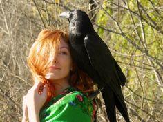 ravensun by ~whitecrow-soul on deviantART Beautiful Birds, Beautiful Pictures, Quoth The Raven, Raven Art, Jackdaw, Crazy Bird, Crows Ravens, Bird Species, Bird Prints
