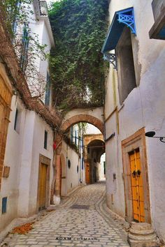 same metropolis, just one more jump to another corner, within the millineray #oldTown, brought to you by Adam Chamkh, #Tunisia, Morning!