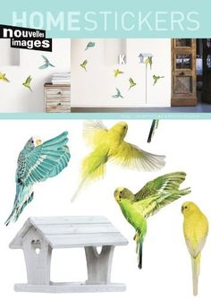 A wall of parakeets in your house! These decorative wall stickers are printed on paper, and are easy to affix and remove.  Get creative and enjoy the sight of...