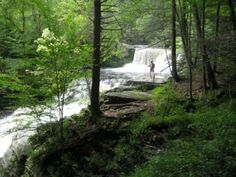 Easy Waterfall Hikes in the Poconos for Families Dream Vacations, Vacation Trips, Day Trips, Delaware Water Gap, Nyc With Kids, Waterfall Hikes, Hiking With Kids, Family Day, Day Hike