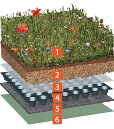Providing valuable ecological habits through 24 BREEAM certified wildflowers, a biodiverse wild flower blanket provides a instant Greening Roof system. Garage Roof, Shed Roof, House Roof, Extensive Green Roof, Craft Shed, Living Roofs, Backyard Makeover, Earthship, Garden Spaces