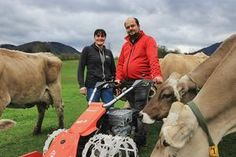 Das Metallrad 2.0 für Motormäher.Stefan Edtbauer bringt seinen Erfindergeist auf dem Milchviehbetrieb ein, den seine Frau Sabine führt. (Fotos: Weninger) Cow, Animals, Pictures, Inventors, Ghosts, Interesting Facts, Metal, Woman, Animales