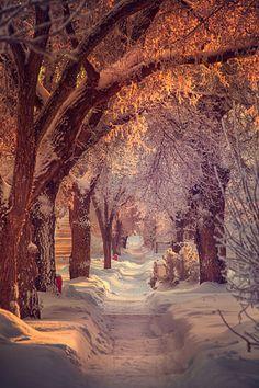 Promenade hivernale, calme et douce !