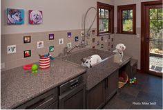 AWESOME custom dog washing station.  Note the stairs/counters for larger dogs.  Nice custom granite dog washing basin.  This room also has a coffee/wine area plus fridge.  Really NEAT room!