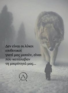 Greek Quotes, Wolf, Health Tips, Angel, Animals, Animales, Animaux, Wolves, Animal