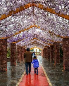 What a lovely shot of Ab-o Atash Park entrance, Tehran, IRAN @ifilmenglish