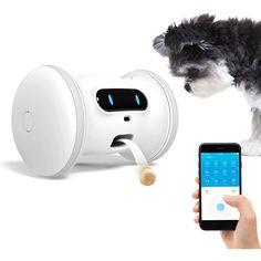 Dog Gadgets, Cool New Gadgets, Cute Dog Toys, Cat Toys, Pet Camera, Dog Steps, Interactive Dog Toys, Dog Wash, Pet News