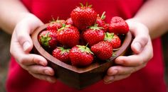 strawberries fruit still life red berry hands Strawberry Leaves, Strawberry Plants, Strawberry Fields, Strawberry Shortcake, Strawberry Health Benefits, Beautiful Fruits, Natural Beauty Tips, Health Desserts, Health Foods