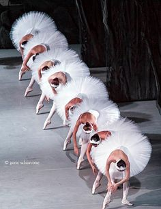Russian Ballet - all in a line.