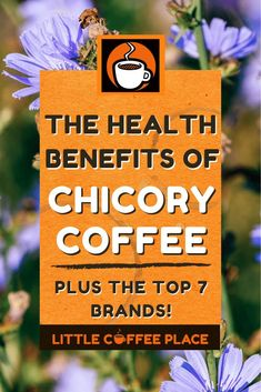 The Health Benefits of Chicory Coffee | Long used as a low acid, caffeine free coffee substitute throughout the world; Chicory coffee may offer more health benefits than just a coffee replacement. #littlecoffeeplace #chicory #lowacidcoffee #caffinefree #coffeesubstitutes Low Acid Coffee, Little's Coffee, Coffee Pods, Cafe Du Monde Coffee, Coffee Substitute, Community Coffee, Coffee Facts, Coffee Benefits, How To Make Coffee