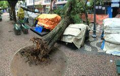 RS Notícias: Temporal volta a causar estragos em Porto Alegre