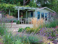 Pflegeleichter Garten anlegen - einheimische Blumen und Pflanzen