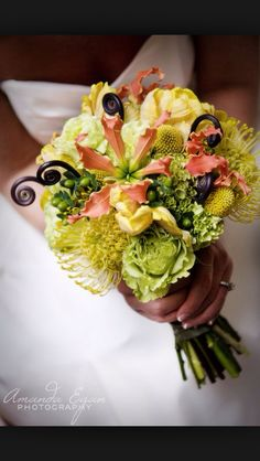 Pin cushion flowers