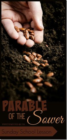 Parable of the Sower Sunday School Lesson - clever ideas for telling this Bible lesson including visual illustration, seed activity, and flower craft for kids.