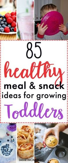 Do you need toddler meal ideas for your picky eater? Having healthy and quick toddler meals is a must for any mom. From finger foods, to fun toddler meals, to having a rainbow plate of food, here are 85 meal and snack ideas for your 2 year old toddler!
