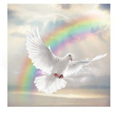 Holy Spirit Dove and rainbow prophetic art. Без названия #301 by miss-miss111 on Polyvore featuring картины