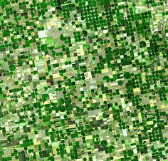 Can someone explain why the Google Earth view of Kansas looks like this?