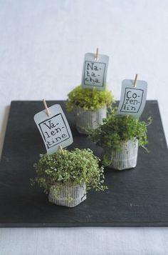 D�co de mariage inspir�e du jardin, shopping chez Botanique editions
