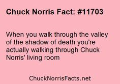 Chuck Norris jokes  When you walk through the valley of the shadow of... | ChuckNorrisFacts.net