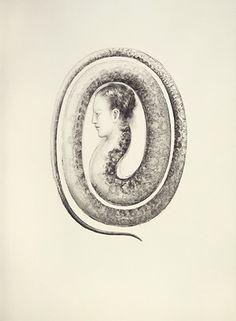 Serpent [Juul Kraijer]