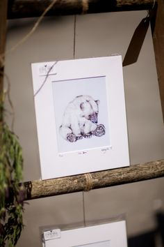Little mischievous polar bear illustration, on a rustic ladder display Polar Bear Illustration, Ladder Display, Rustic Ladder, Curious Creatures, Hanging Pictures, Paper Goods, I Shop, Whimsical, Cute Animals