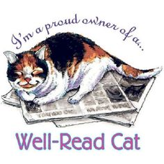 Well Read Cat HEAT PRESS TRANSFER for T Shirt Tote Sweatshirt Fabric Block #289c #AB