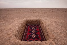 Unexpected Photographs with Persian Carpets – Fubiz Media