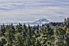 Title  Mount Rainier In The Distance   Artist  Cathy Anderson   Medium  Photograph - Photograph-digital Art Digital Painting