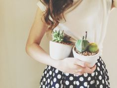 Yesterday's Sweetheart: succulents