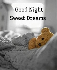 Good Night Images For WhatsApp - Cute Good Night Images Good Night Greetings, Good Night Messages, Good Night Wishes, Good Night Moon, Good Night Quotes, Good Morning Good Night, Good Night I Love You, Good Night Image, Sweet Night