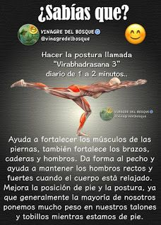 Gym Workout Tips, After Workout, Yoga Fitness, Health Fitness, Yoga World, Human Nutrition, Yoga Anatomy, Yoga Mantras, Relaxing Yoga