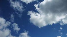 マインドワンダリングとDMNの応用      今回の記事は「認知科学」「禅・瞑想・マインドフルネス」