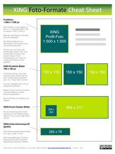infografik fr das businessnetzwerk xing