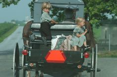 An Amish boy and girl ride in the back of a horse and buggy. Pennsylvania Amish Area, I have also been to the Kentucky Amish Area but still have Ohio to go