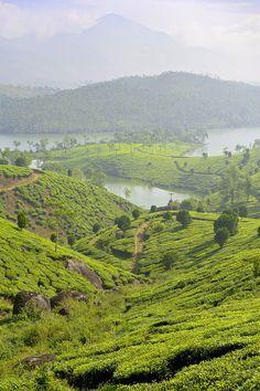 Kerala, India ✫ ✫ ✫ ✫ ♥ ❖❣❖✿ღ✿ ॐ ☀️☀️☀️ ✿⊱✦★ ♥ ♡༺✿ ☾♡ ♥ ♫ La-la-la Bonne vie ♪ ♥❀ ♢♦ ♡ ❊ ** Have a Nice Day! ** ❊ ღ‿ ❀♥ ~ Mon 05th Oct 2015 ~ ~ ❤♡༻ ☆༺❀ .•` ✿⊱ ♡༻ ღ☀ᴀ ρᴇᴀcᴇғυʟ ρᴀʀᴀᴅısᴇ¸.•` ✿⊱╮