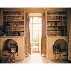 Best Pictures 25 Cool Indoor Dog Houses , Concepts A secure place for your dog A dog kennel is a good selection to offer your dogs protected quit all t Built In Dog Bed, Dog Nook, Cool Dog Houses, Houses Houses, Amazing Houses, Mans Best Friend, Dog Life, My Dream Home, Best Dogs