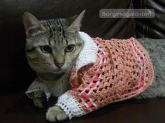 roupas de crochê para cães e gatos - Pesquisa Google