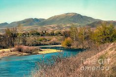 Looking Up The Payette River  :at http://robert-bales.artistwebsites.com/