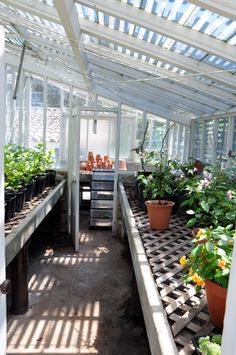 Greenhouse for the backyard
